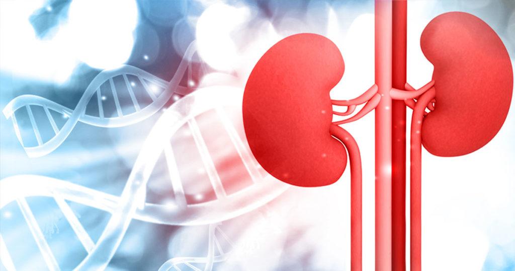 boli renale- dializă